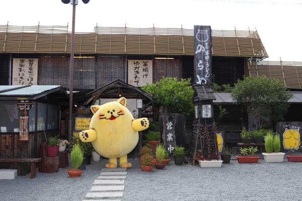 猫好きにはたまらない!大阪の手打草部うどん「のらや」で美味しいうどんを食べました